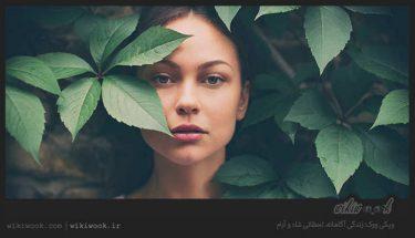 توصیه هایی برای زیبایی بدون آرایش! - ویکی ووک