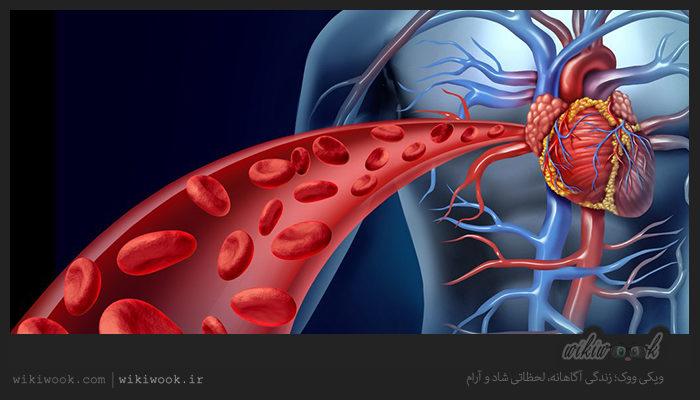 چگونه اکسیژن خون را افزایش دهیم؟ / ویکی ووک