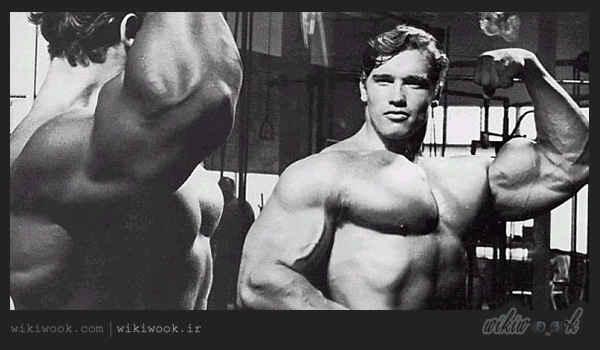 آشنایی با ورزش بدن سازی یا Body building / ویکی ووک