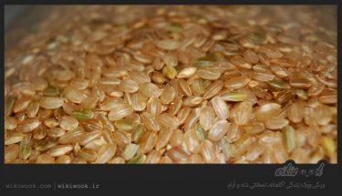 برنج سبوس دار چه فوایدی دارد؟ / ویکی ووک