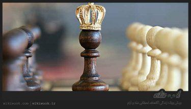 شطرنج چیست؟ / ویکی ووک