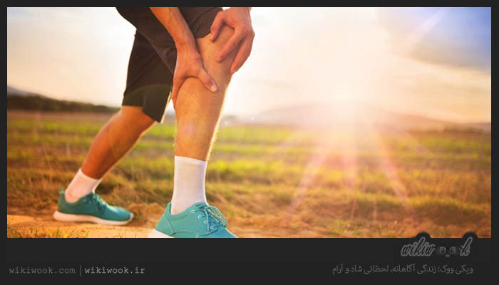 عضلات پا