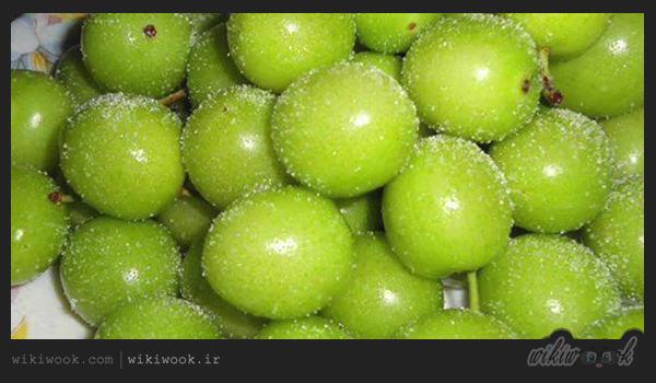 گوجه سبز و خواص آن / ویکی ووک