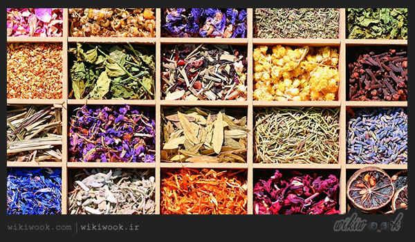 طبقه بندی گیاهان دارویی بر اساس اثرات درمانی / ویکی ووک