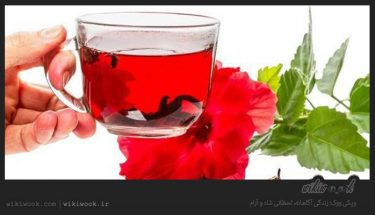 چای ترش چه خواصی دارد؟ / ویکی ووک