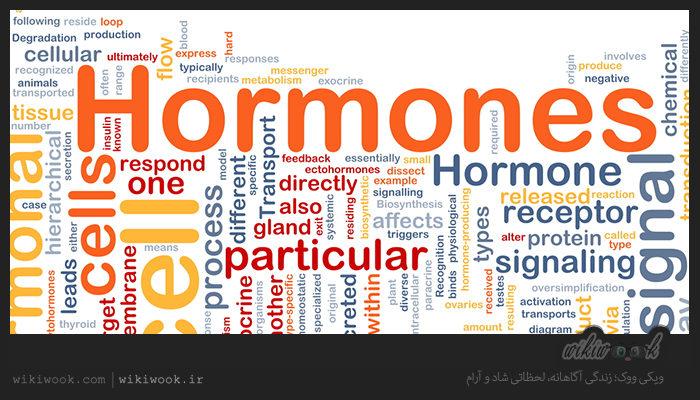 چگونه مشکلات هورمونی را برطرف کنیم؟ / ویکی ووک