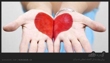 متن کوتاه انگلیسی دربارهی قدرت حس لامسه / ویکی ووک