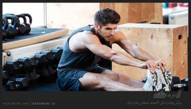 ورزش ایزوتونیک چیست؟ ویکی ووک