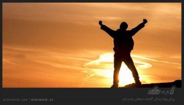 داستان انگیزشی شماره 90 - لحظات زندگی / ویکی ووک