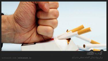 چگونه به راحتی سیگار را ترک کنیم؟ / ویکی ووک