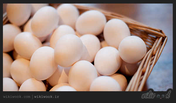 املت قارچ و پیازچه و طرز تهیه آن / ویکی ووک