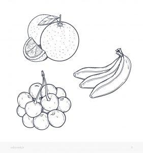 رنگ آمیزی کودکانه ویکی ووک با موضوع میوه ها