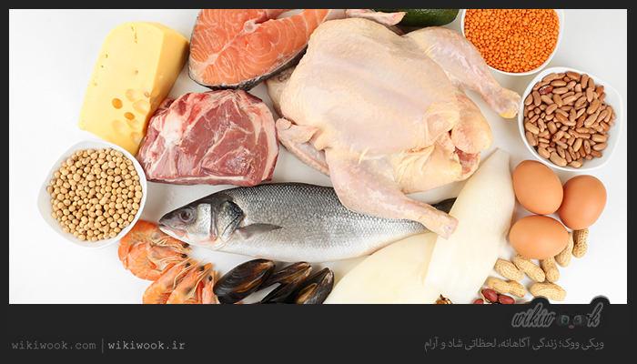 نشانه های کمبود پروتئین در بدن چیست؟ / ویکی ووک