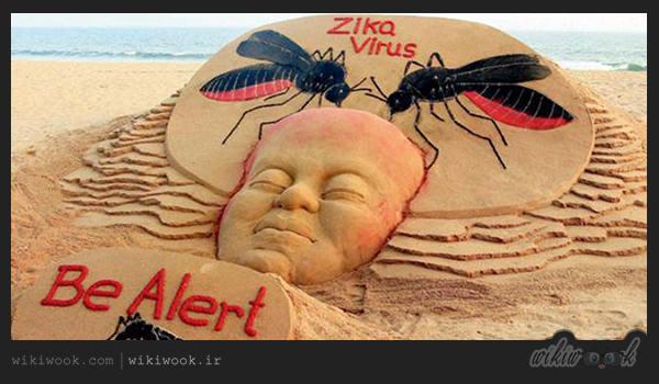 ویروس زیکا چیست؟ / ویکی ووک