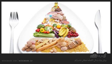 برنامه غذایی مناسب برای سلامت انسان چیست – ویکی ووک