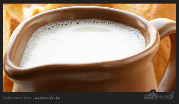 شیر شتر چه خواصی دارد؟ / ویکی ووک