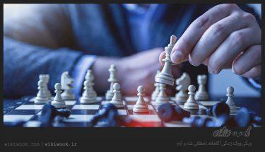 درباره بازی شطرنج چه میدانید؟ - ویکی ووک