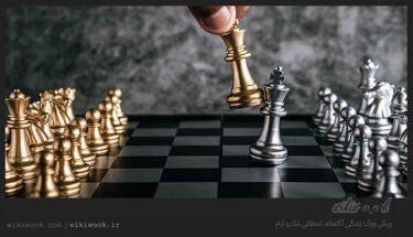 آشنایی با اصطلاحات شطرنج - ویکی ووک
