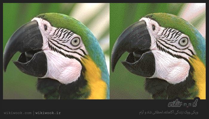وب سایت های کاربردی برای کاهش حجم عکس / ویکی ووک