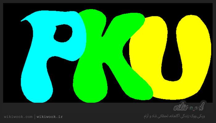 پی کی یو