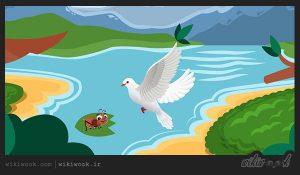 داستان کوتاه انگلیسی مورچه و کبوتر