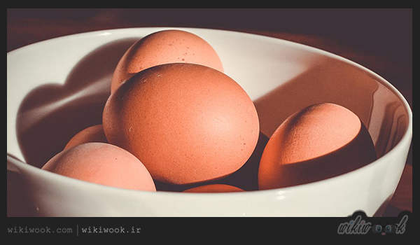 تخم مرغ - ویکی ووک