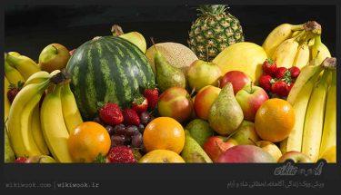 بهترین زمان خوردن میوه چه هنگام است؟ / ویکی ووک
