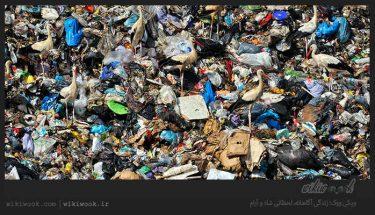 زباله چیست؟ / ویکی ووک