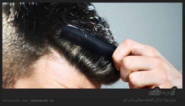 برای داشتن موهایی سالم از چه نوع شامپویی استفاده کنیم؟ / ویکی ووک