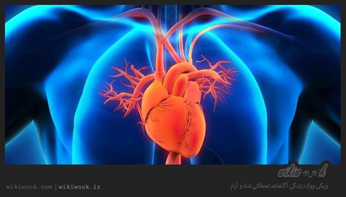 کدام ادویه ها برای بیماران قلبی مفید است؟ / ویکی ووک