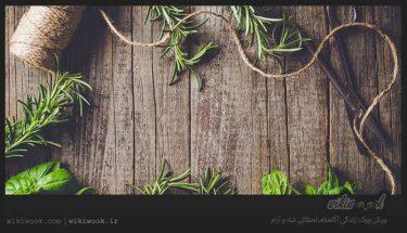 گیاهان دارویی چه خصوصیاتی دارند؟ / ویکی ووک