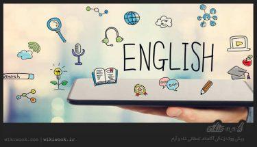 چند اصطلاح کاربردی انگلیسی – ویکی ووک