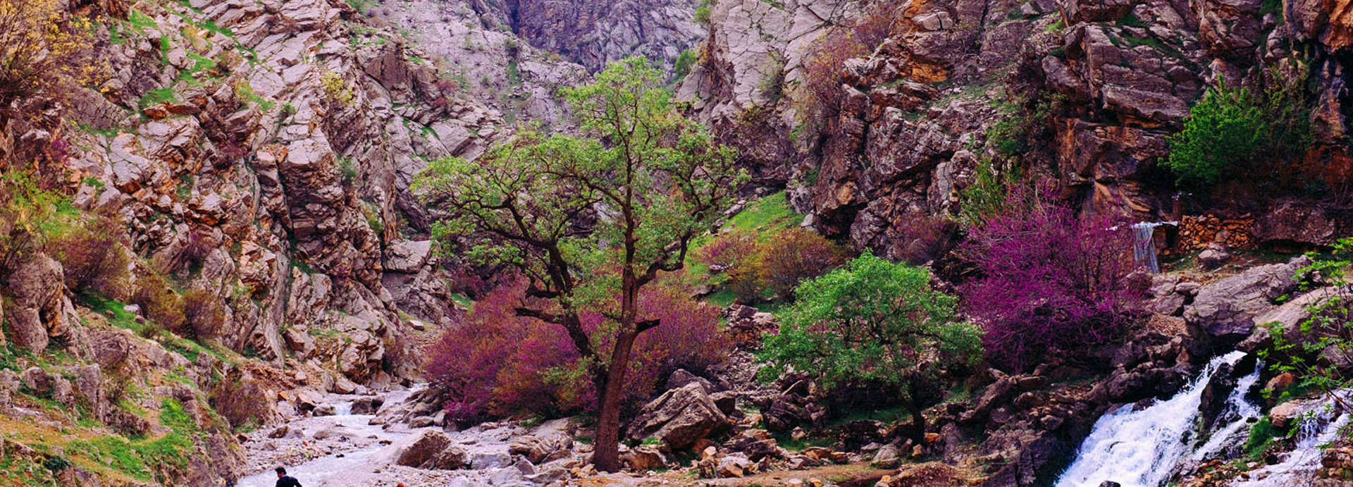 طبیعت کردستان ایران - ویکی ووک