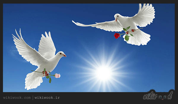 داستان انگیزشی شماره 15 – نقاشی صلح / ویکی ووک