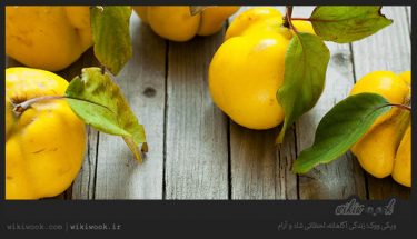 نحوهی مصرف میوه به چگونه است؟ / ویکی ووک