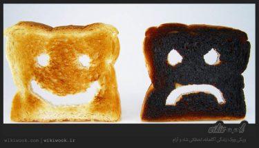 بیسکویت های سوخته : burned buscuit