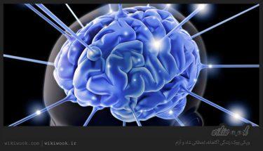 عملکرد ذهنی