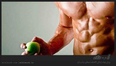 قبل و بعد از ورزش کردن چی باید بخوریم؟ / ویکی ووک