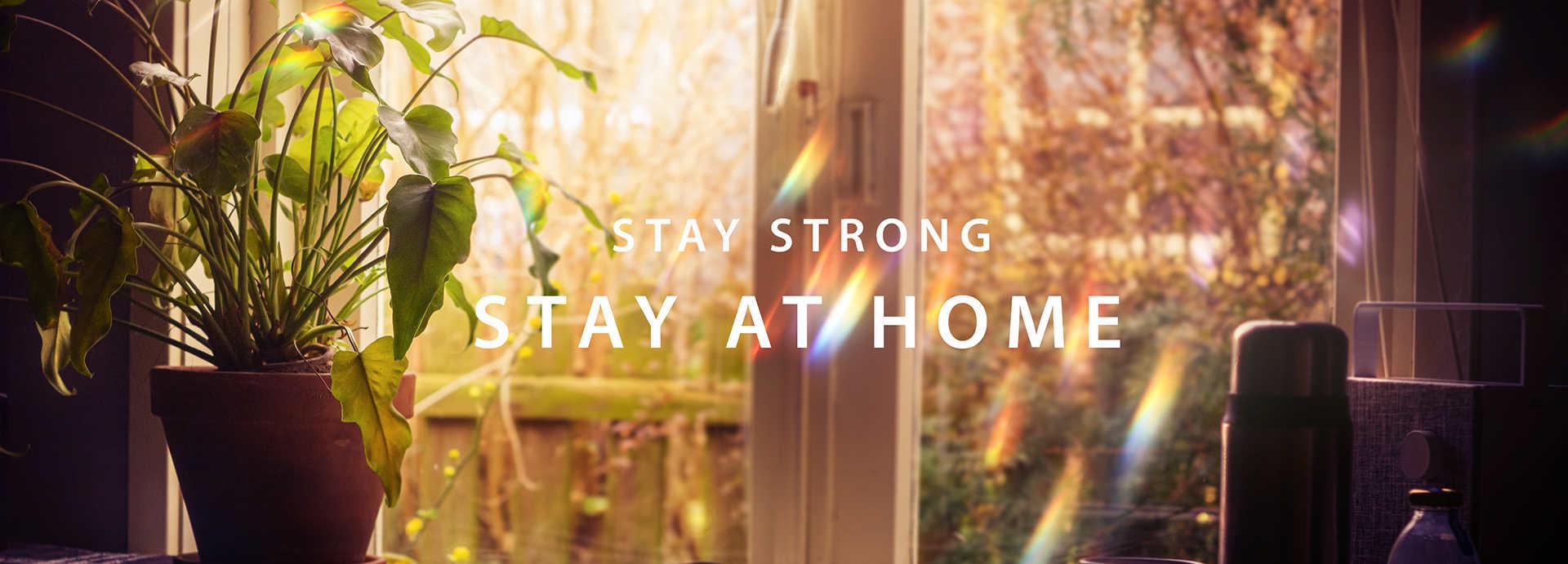 در خانه بمانیم - ویکی ووک
