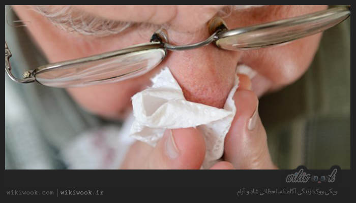 چگونه از ابتلا به آنفلوآنزای خوکی پیشگیری کنیم؟ / ویکی ووک