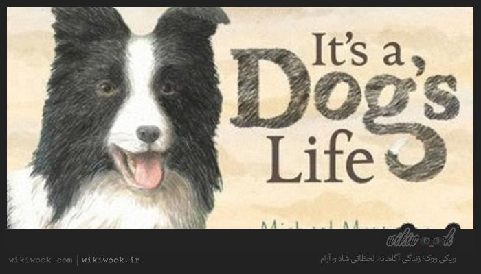 داستان کوتاه انگلیسی زندگی یک سگ