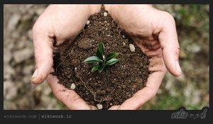 حفظ سلامتی خاک